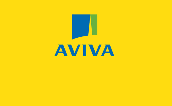 Aviva buys US equity manager River Road