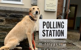 Who let the dogs out? Advisers and pets cast their vote in #GE2019